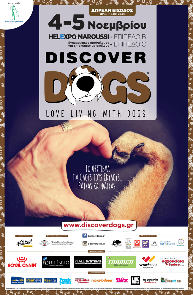 discover dogs in
