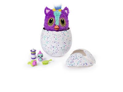 Hatchimals: Ποιο θα βγει από το αβγό; Αγόρι ή Κορίτσι;