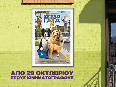«Σαν τον Σκύλο με τη Γάτα 3» | Από 29 Οκτωβρίου στους κινηματογράφους!
